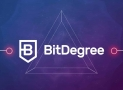 Reshape Your Career With BitDegree's Free Learning Path